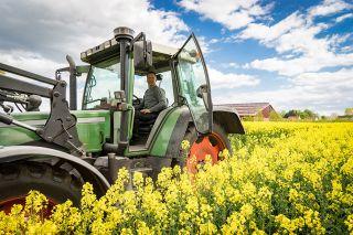 Foto: Traktor am Feld